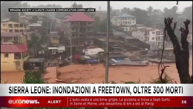 euronews in diretta