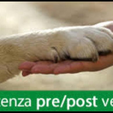 Oggi con ADICONSUM Alessandria – Asti, parliamo di animali che si acquistano e le garanzie…..